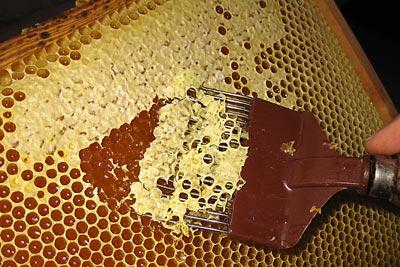 honningtavler